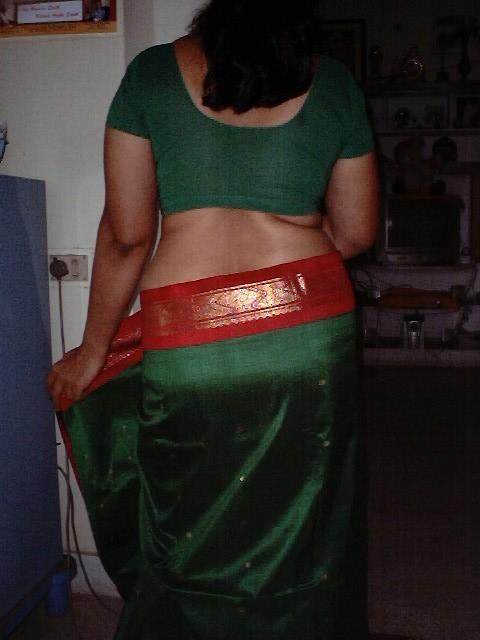 Indian Saree Nude Photo  Desi Bhabhi Saree Removing Step -7681