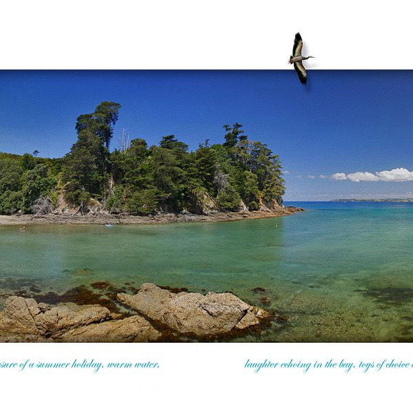 Fine art panorama of Leigh Harbour, North Auckland, New Zealand
