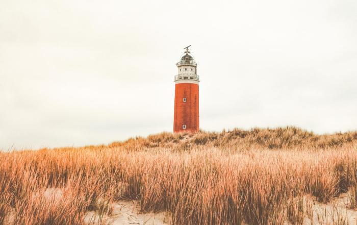 Texel city Guide