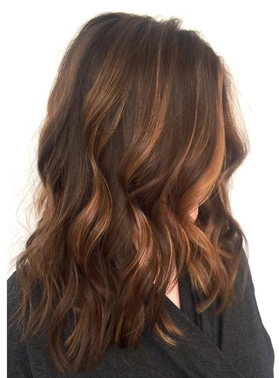 Thick Wavy Hair with Caramel Highlights