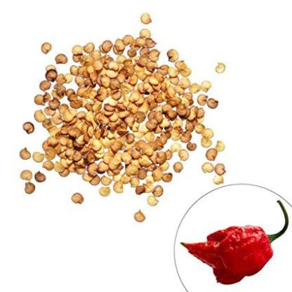 Carolina Reaper Seeds 100 Seeds