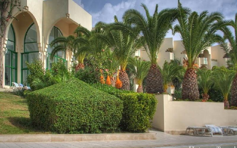 Тури в апреле в Тунис природа