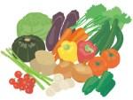 ためしてガッテン糖尿病新撃退法は食べて腸内細菌を増やす!