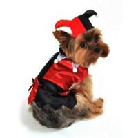 Mardi Gras Jester Dog Costume | HoundAbout