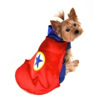 Superhero Dog Costume (Red) | HoundAbout