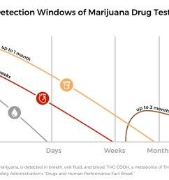 graph of detection windows for various marijuana drug tests [ 1645 x 833 Pixel ]