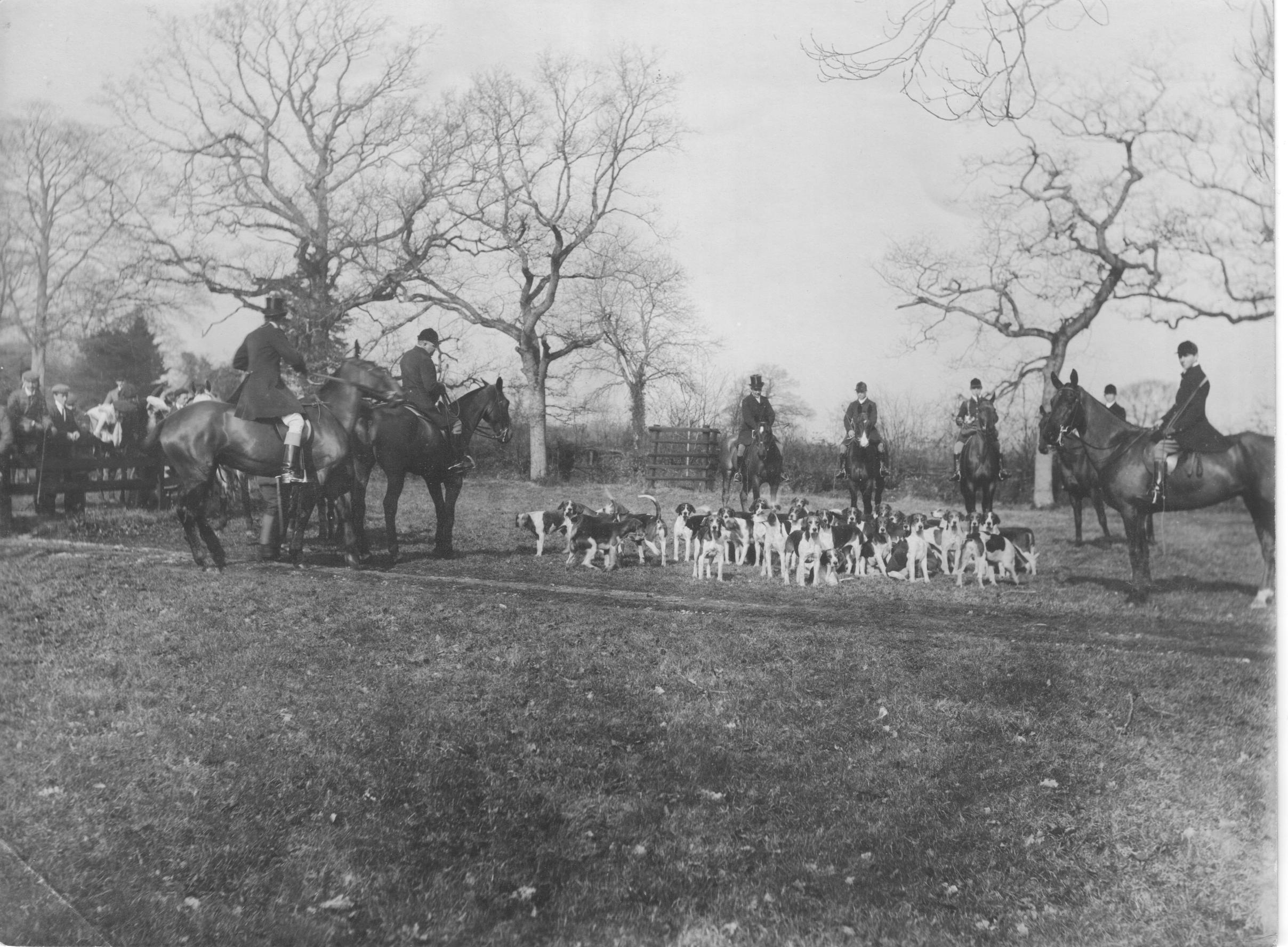 Foxhunting in England, 1906