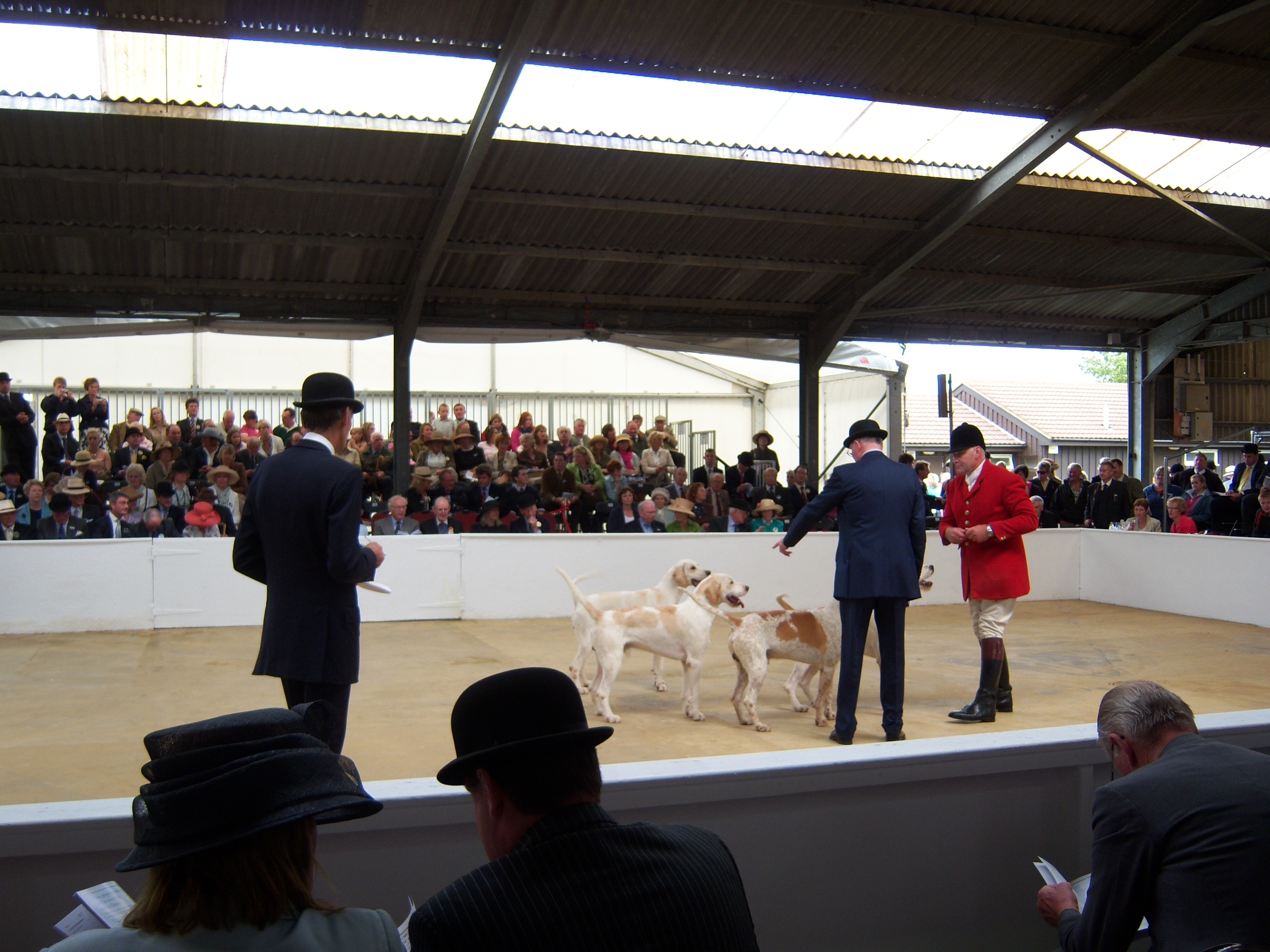 Cottesmore's hounds, shown here with huntsman Neil Coleman and the Peterborough judges, showed well all day