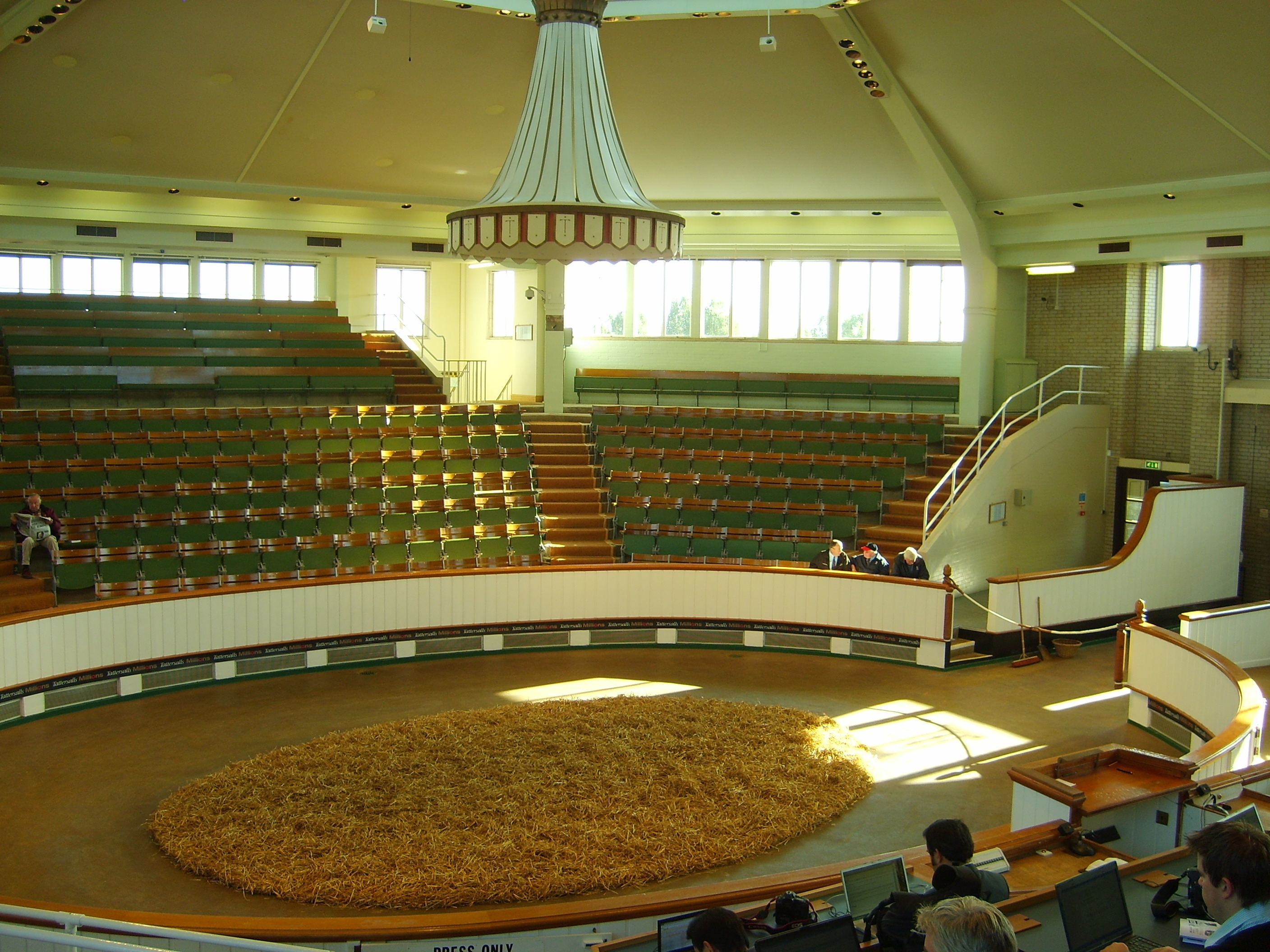 """The Tattersalls auction ring is round, intimate, light, and airy, with a domed top. It is, as one attendee observed, """"a little like sitting inside a teapot."""" Unlike at major Thoroughbred sales in the United States, where the horses generally are held standing in the center of a small auction area, at Tattersalls the horses are walked around the path so potential buyers can watch them while bidding."""