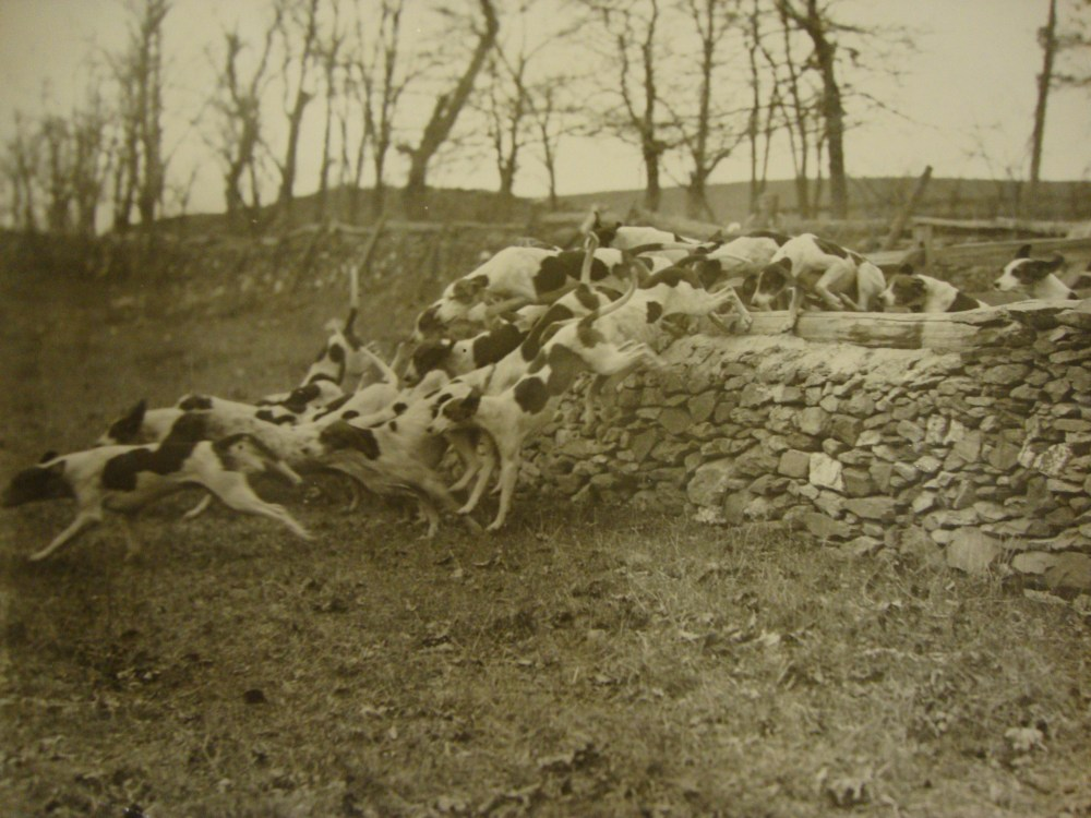 The Great Hound Match of 1905-Part 2 (1/6)
