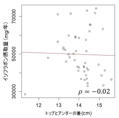 イソフラボンとおっぱい大きさの関係