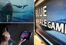 Blue Whale Dare Game - Things You Need to Know