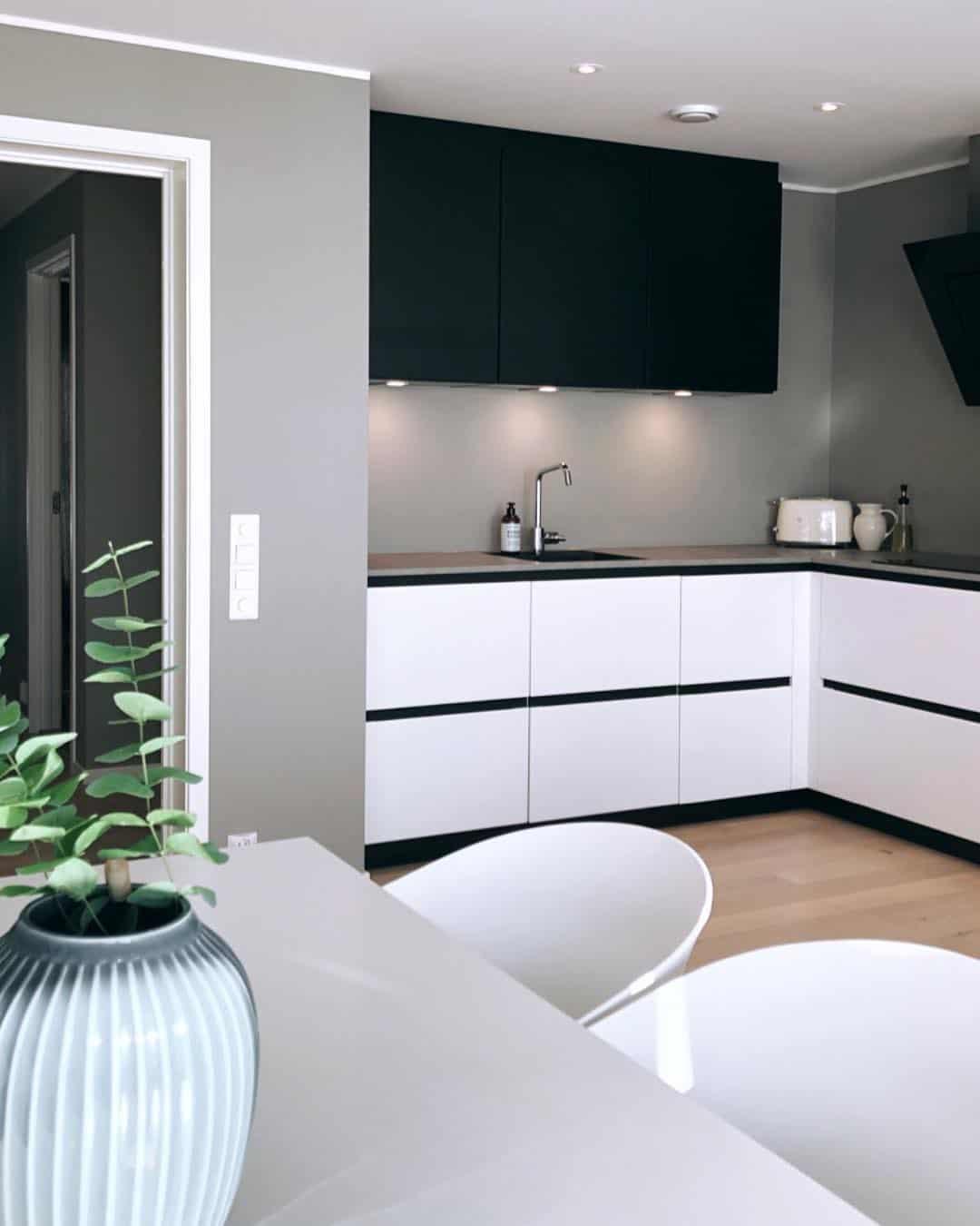 Kitchen Interior Design Rules