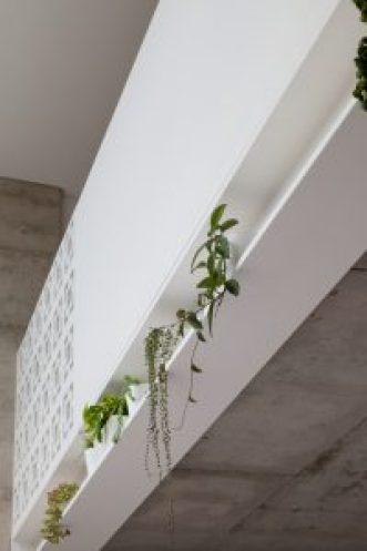 Etica-Studio-Nature-Inspired-Eco-House-recycled-Perth-builder-Perth-designer-house-city-block-Carla-Karsakis