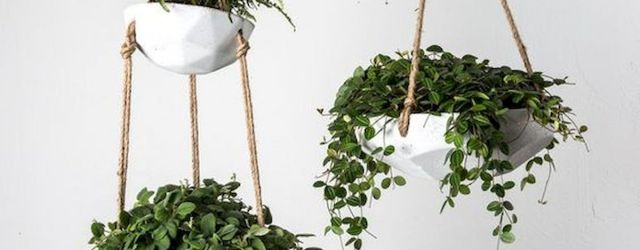 30 Cute Hanging Plants to Decorate Your Interior Home (1)