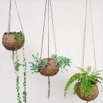 30 Cute Hanging Plants to Decorate Your Interior Home (17)