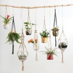 30 Cute Hanging Plants to Decorate Your Interior Home (22)