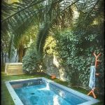 50 Gorgeous Small Swimming Pool Ideas for Small Backyard (4)
