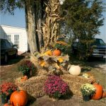35 Cool Fall Outdoor Decor Ideas You Will Like (14)
