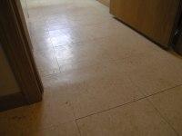 Vinyl Flooring Cost Per Square Foot