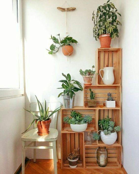 Indoor Corner Plant Stands