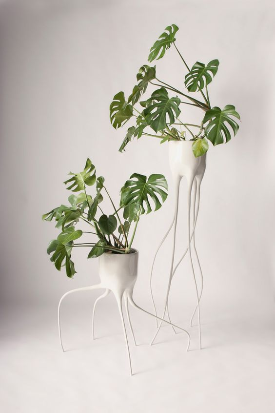 Modern Outdoor Plant Stands