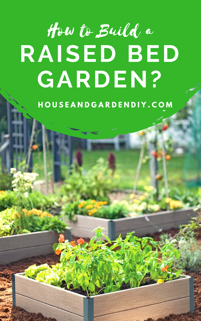 How to Build a Raised Bed Garden?