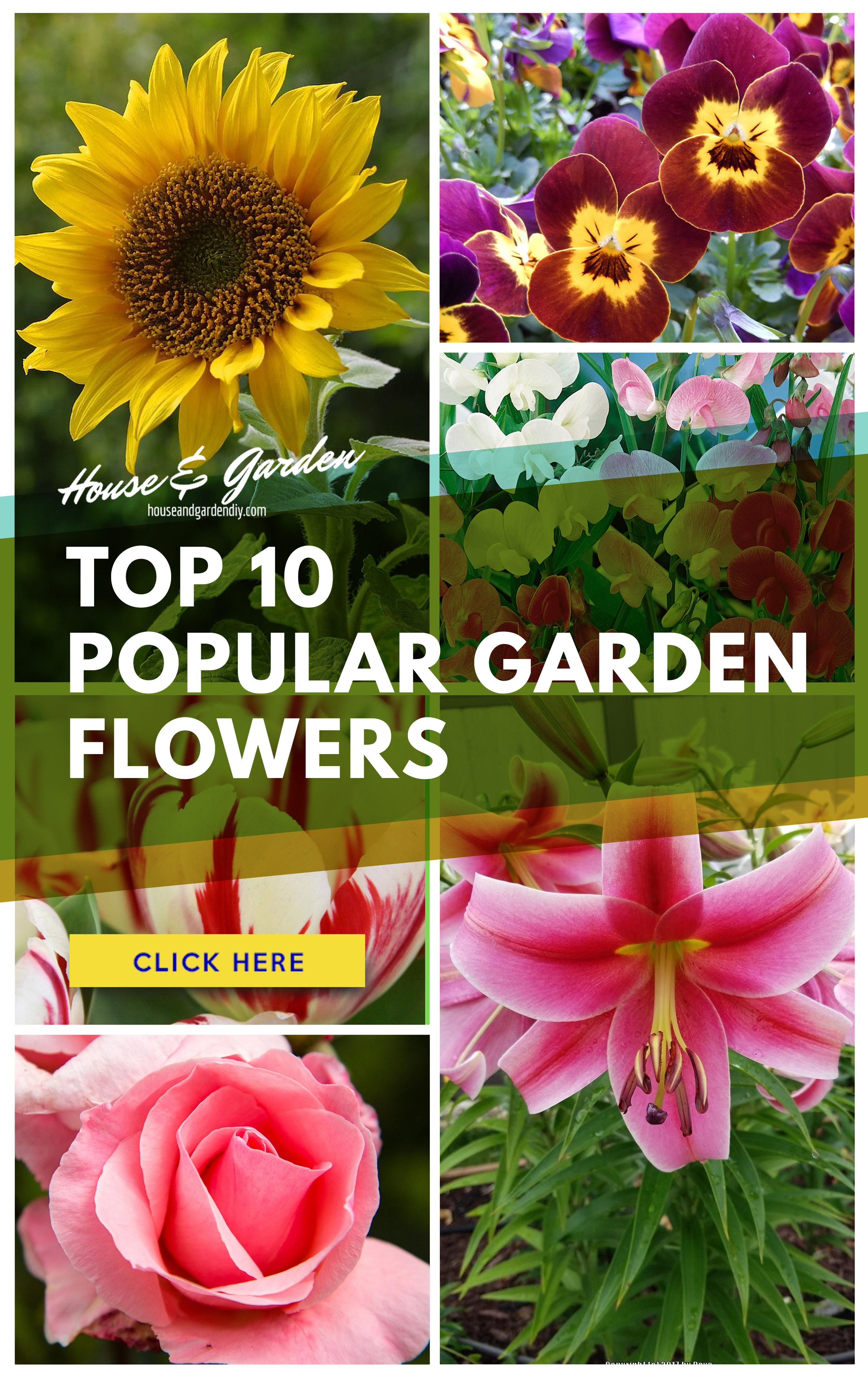 23+ flower garden ideas 2019 (how to plan for beginner & popular