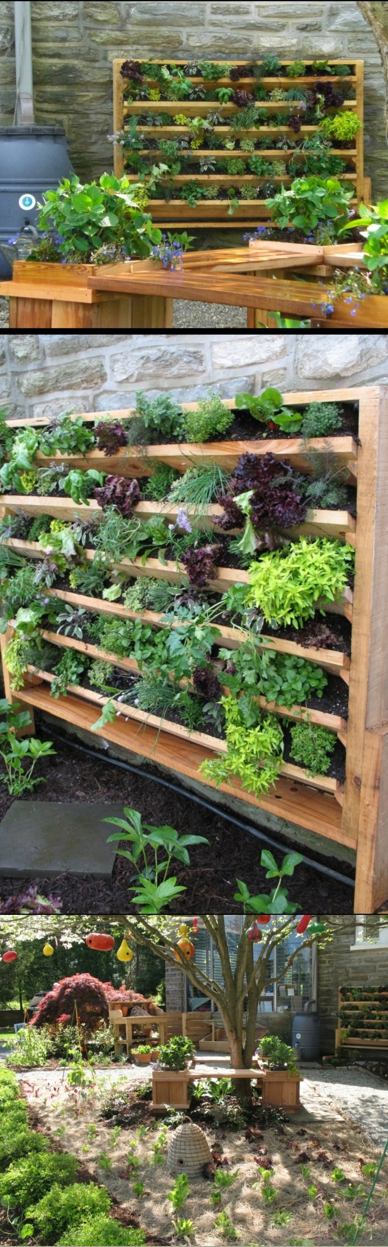 23 Herb Garden Ideas A Guide On How To Grow Herbs 10 Easiest Herbs To Grow