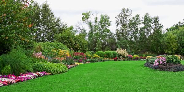 Lawn Gardens Landscaping