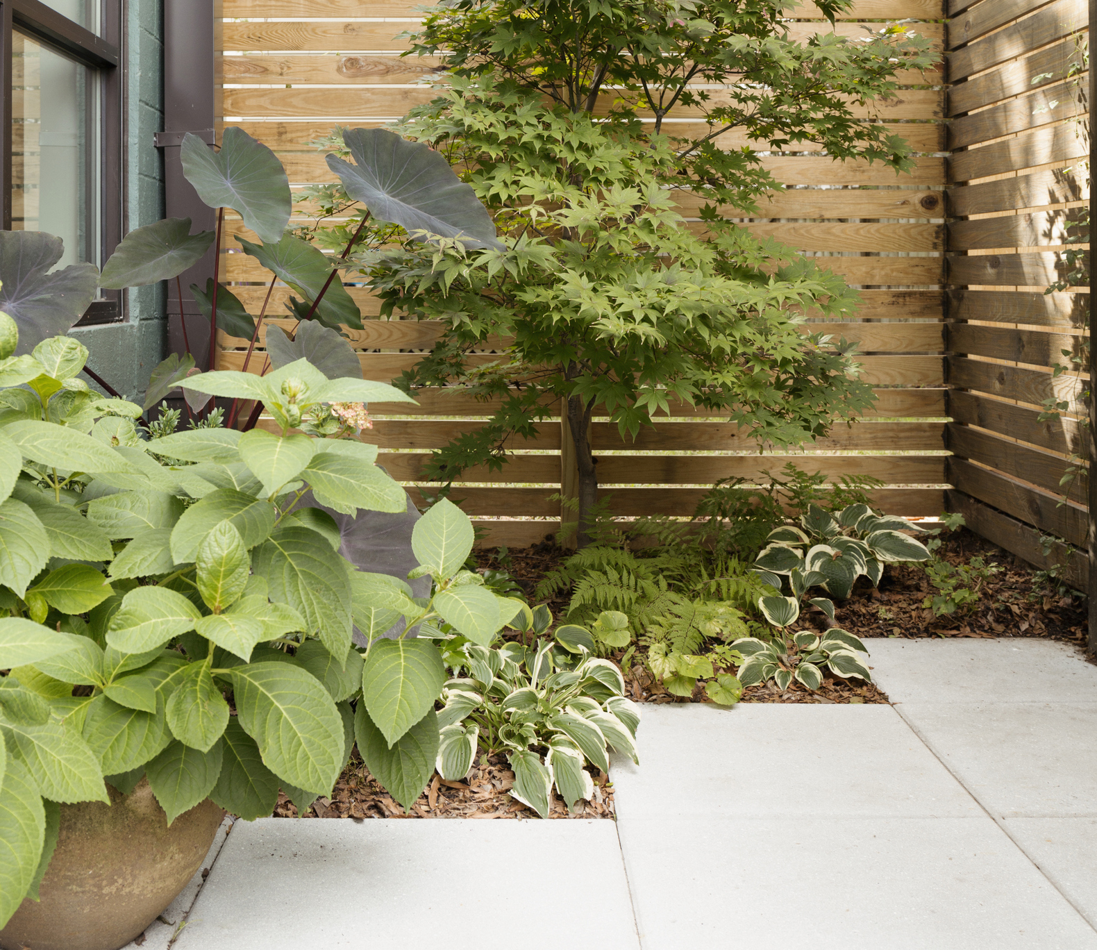 Low Maintenance Gardens How To Get The Wow Factor All