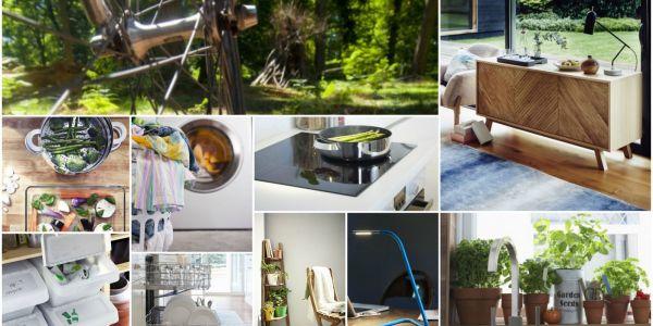Swedish Lifestyle Concept Lagom Dominate 2017