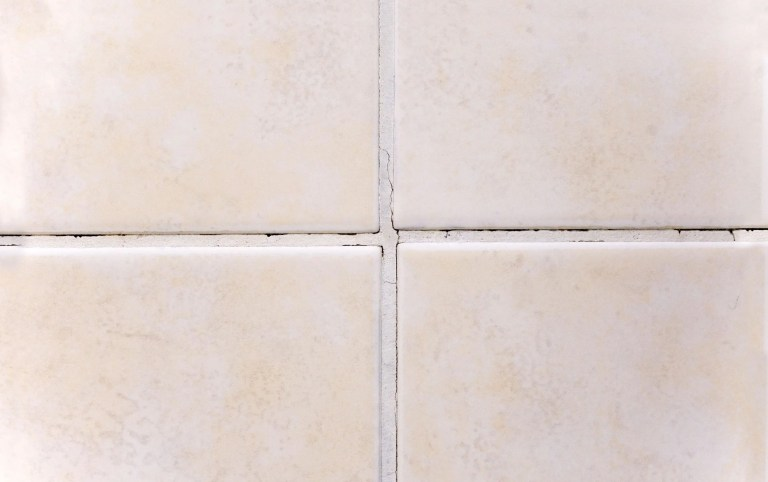 A title wall with mold growing in the grout