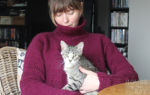 Knitting kitten | Kide Sweater We are Knitters | House by the Bay