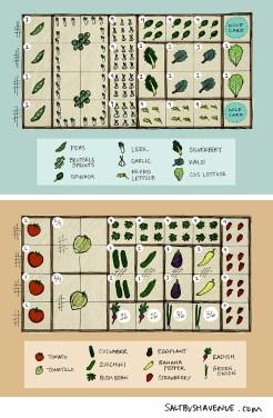 Framable garden plan.