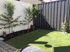 New lawn.