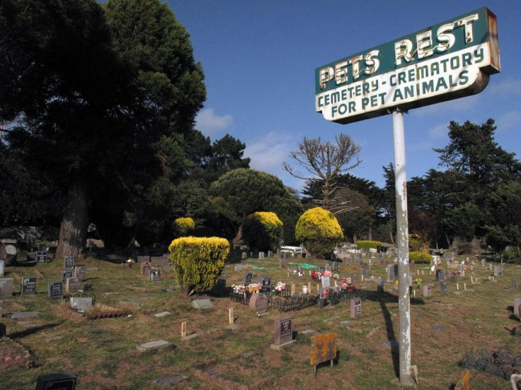 Colma, California Pet Cemetery