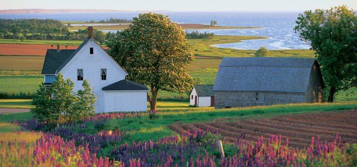 Beautiful Prince Edward Island, Canada