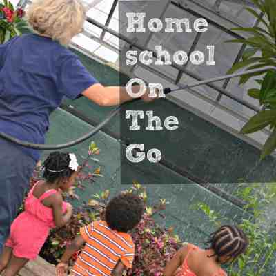 Homeschool On The Go: Garfield Park Conservatory