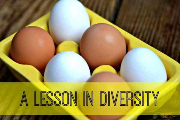 A lesson in teaching diversity