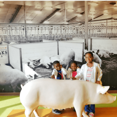 Homeschool Field Trip | Fair Oaks Farm Visit #WeSowWeGrow