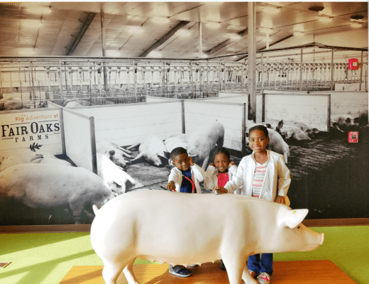 National Pork Month at Fair Oaks Farm