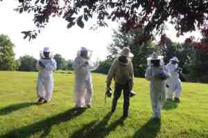 Learning Beekeeping at Monsanto