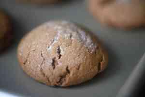 Slow As Molasses Cookies - Houseful Of Cookies