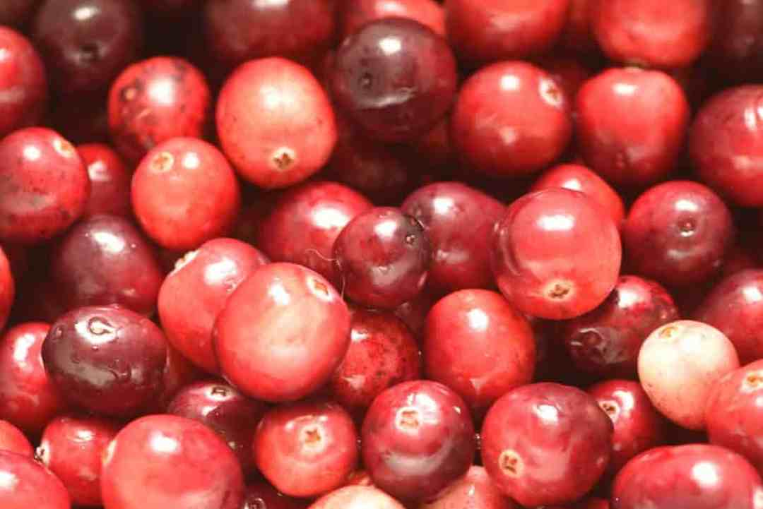 Ove-Drying Cranberries