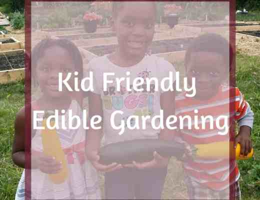 Kid Friendly Edible Gardening