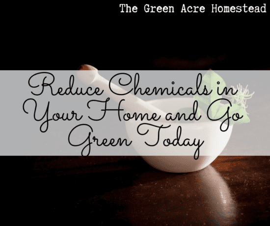 Homestead Blog Hop Feature - Reduce-Chemicals-in-Your-Home-and-Go-Green-Today