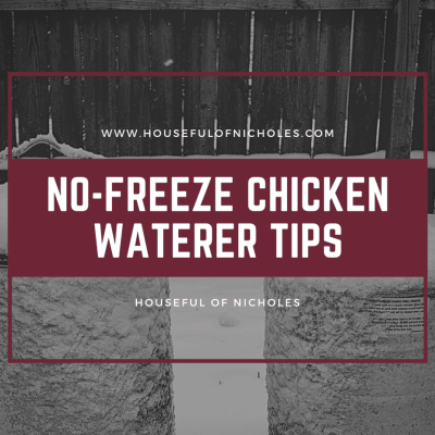 How to Keep Your Chicken Water from Freezing