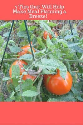Homestead Blog Hop Feature - 7 Tips that help help make meal planning a breeze