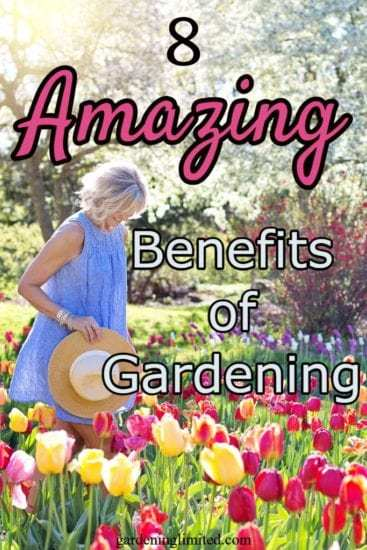 Homestead Blog Hop Feature - 8 Amazing Benefits of Gardening